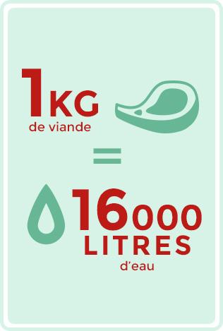 1 kg de viande = 16 000 litres d'eau.